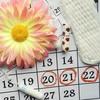 kalendarz i miesiączka